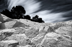 Extreme LE of Clouds over Tree Line and Sea Cliff - Bailey's Hill Park Nahant, Massachusetts USA photo by Greg DuBois Photography