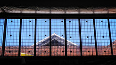 Roof Seen Through Shed Windows photo by Theen ...