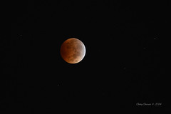 Lunar Eclipse photo by Gaviotita