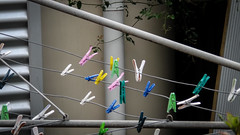 Bright Plastic Pegs photo by Theen ...