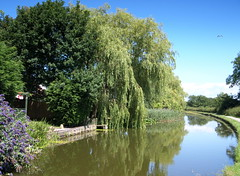 Lancaster Canal at Preston photo by Tony Worrall Foto