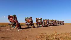 Cadillac Ranch - Amarillo, Texas photo by Andrea Moscato