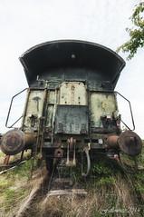 The last train. Le sanglier aux abois. photo by Fallowsite