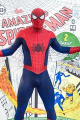 Spider-Man photo by sdoorly