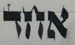Soferet Avielah's Torah