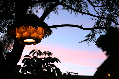 light outside the enchanted tiki room