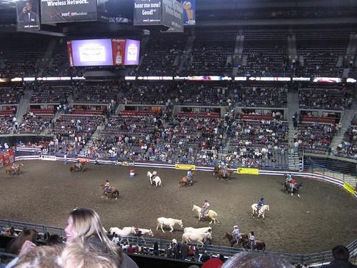 Long horn rodeo