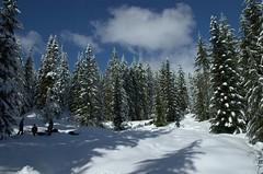 Snow Campout