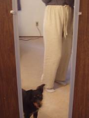pants project