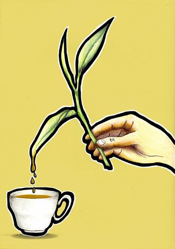 Fresh-Tea