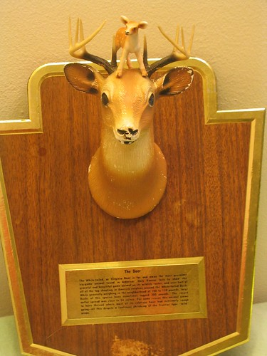 A DEER PLAQUE!!!