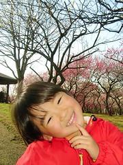 青葉の森公園の梅