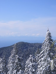 View From the Base of Hollyburn Mountain