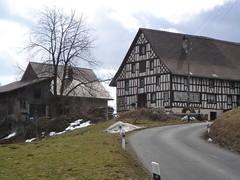 Widenbach Hirzel