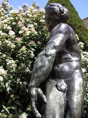 Adam i lustgården