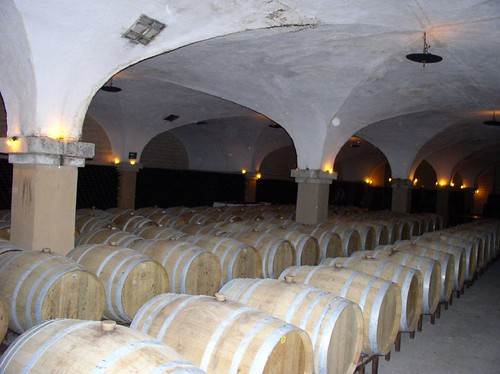 The cava or cellar at the LA Cetto winery