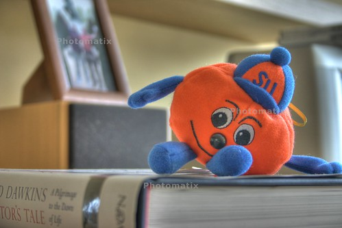 HDR Otto the Orange
