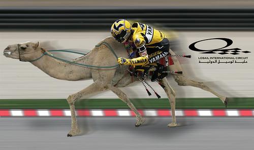 Qatar losail circuit