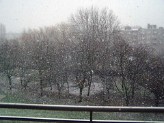Snowing in Brussels