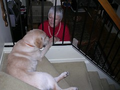 Grandma's here!