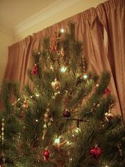 Giant Christmastree