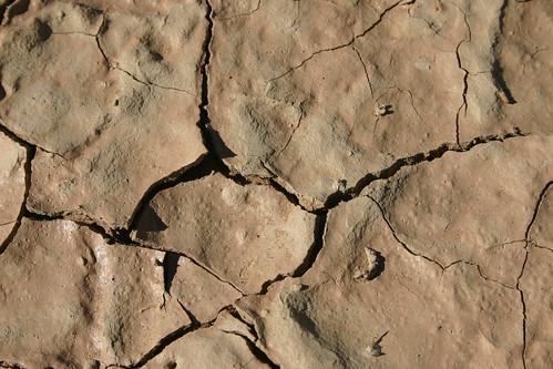 Close-up mud