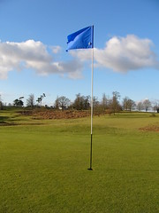 Blue flag, blue sky. Photo hosted at Flickr