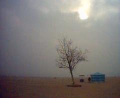 冬天 青岛海边