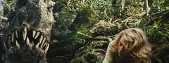 金刚-看恐龙的大板牙