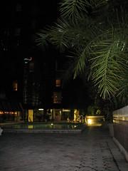 The pool at the Hyatt