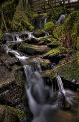 Woodland Stream photo by Markhenderson81