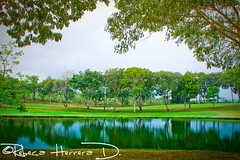 EL CLUB DE GOLF photo by Rebeca Herrera