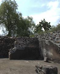 teoihuacan-9