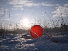 Pics/Art/Red Ball/PICT0724.JPG