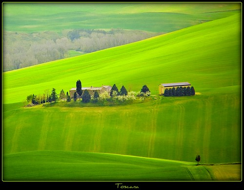 Toscana - thanks for 1.555.420 views photo by NPPhotographie