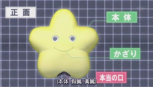 Arakawa epi.09-047.JPG