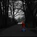 Little Red Riding Hood / Rotkäppchen