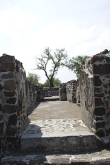 teoihuacan-13