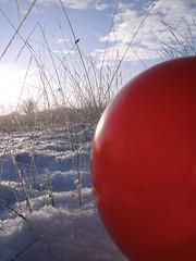 Pics/Art/Red Ball/PICT0720.JPG