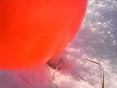 Pics/Art/Red Ball/PICT0728.JPG