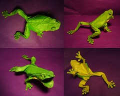treefrog 3.4 photo by origamiPete