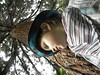 4666890322_f7b4ab5d91_t