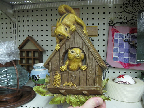 just how do these squirrels fit in anyway