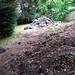 Garden Beginning III