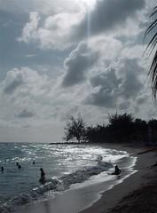 Isola Barbados W.I.; Barbados Island, W.I. photo by Nastrina1981