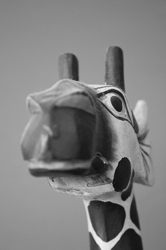 Un ptit air de girafe