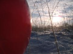 Pics/Art/Red Ball/PICT0715.JPG