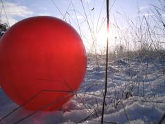 Pics/Art/Red Ball/PICT0722.JPG
