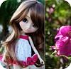 4654211509_b0104c466e_t
