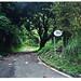 Route 191 - El Junque, Puerto Rico